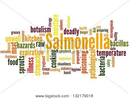 Salmonella, Word Cloud Concept 2