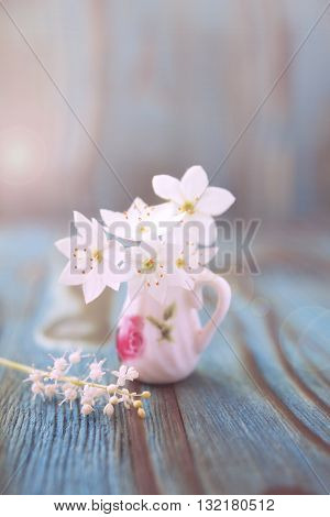 Bouquet of Anemone windflower in miniature diminutive jug. Macro close-up photo with soft focus. Rustic colored wooden background boke effect in summer morning