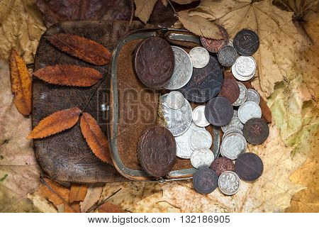 contents of an ancient leather purse with copper and silver coins of 18-20 centuries against autumn leaves