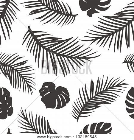 Palm Leaves Isolated on White. Seamless Pattern with Palm and Monstera Leaves. Vector Tropical Background. Tropic Palm Silhouette Shapes.