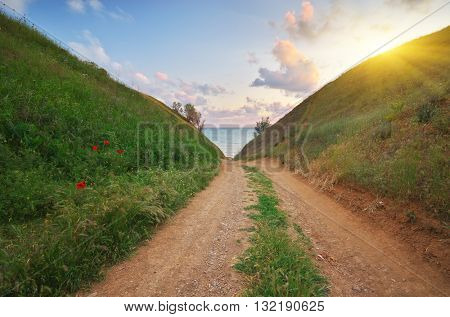 Way to the sea. Nature composition.