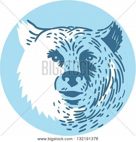 Drawing sketch style illustration of a bear head smiling viewed from front set inside circle on isolated background.