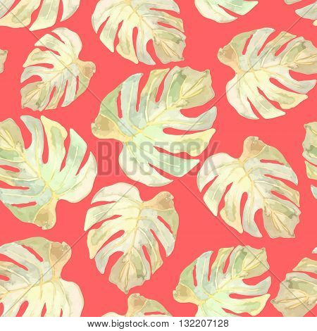 Vector illustration of floral seamless. Monstera leaves on a red background drawn watercolor.