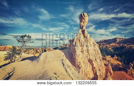 Retro Toned Landscape With Hoodoo, Usa