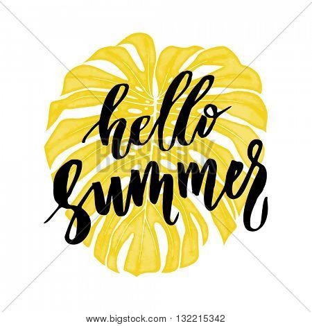 Hello summer on tropic monstera leaf background, tropical palm leaves background, summer background