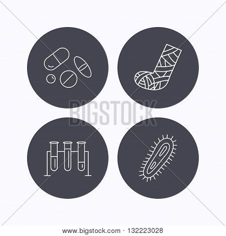 Broken foot, bacteria and medical pills icons. Lab bulbs linear sign. Flat icons in circle buttons on white background. Vector