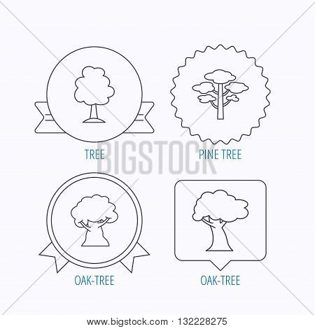 Pine tree, oak-tree icons. Forest trees linear sign. Award medal, star label and speech bubble designs. Vector
