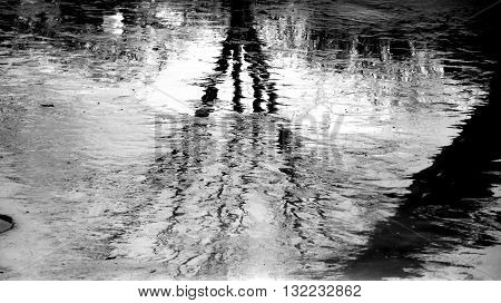 Starkly Contrasted Black and White Criss-Crossed Reflection in Water