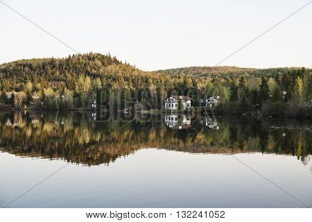 Houses and trees reflected in a forest lake