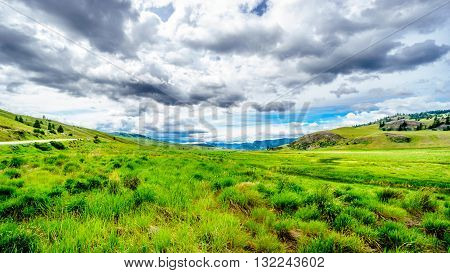The wide open grasslands and rolling hills of the Nicola Valley between Kamloops and Merritt, British Columbia