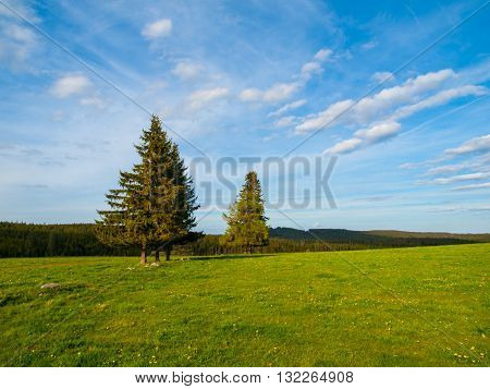 Spring landscape around Plane in Sumava National Park with green meadow, trees and blue sky, Bohemian Forest, Czech Republic