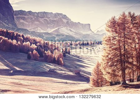 Vintage Landscape With Mountan And Valley