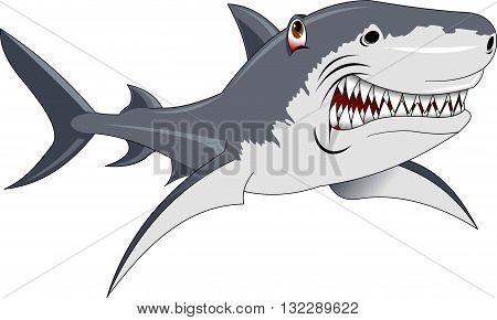 Hungry angry cartoon great white shark wiith big teeth isolated. Graphic illustration