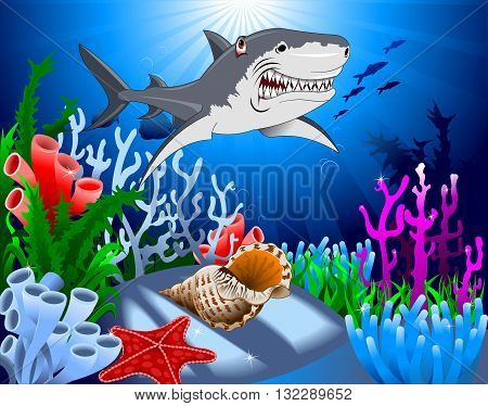 shark and starfish on the ocean floor including coral