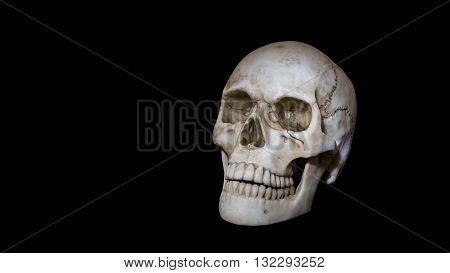 Skull head bone with teeth on black background negative symbol dead