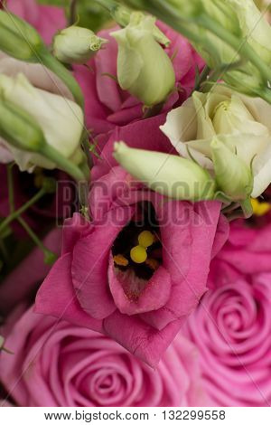 Ecru roses wedding bouquet with pink and white flowers in vertical orientation, nobody. Valentine's concept.