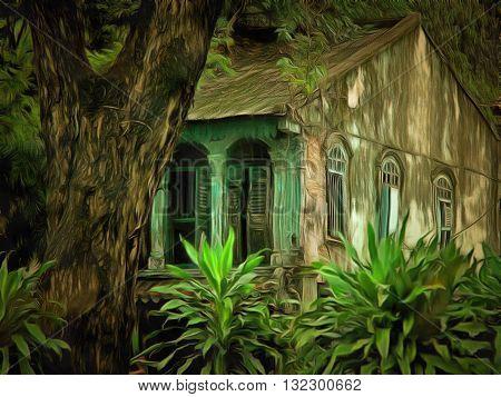An abandoned house with an overgrown garden