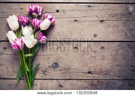 Bright violet and white tulips flowers on aged wooden background. Selective focus. Place for text. Flat lay still life. Toned image.