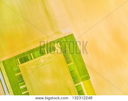 Aerial view to green fields with geometric pattern. Agricultural landscape in Czech Republic. Agriculture in European Union.