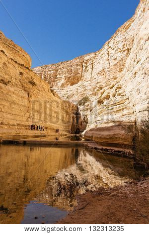 Ein Avdat National Park Canyon a source in the Negev desert