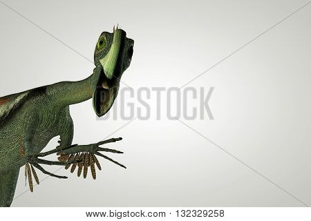 3d illustration of a Gigantoraptor isolated on white background