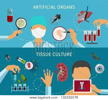 Two horizontal flat biotechnology banner set with descriptions of artificial organs and tissue culture vector illustration