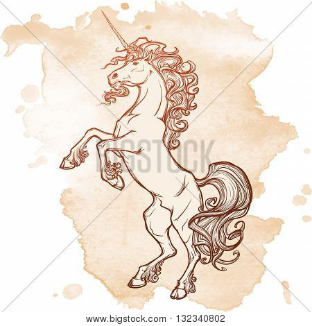 Unicorn standing on its hind legs as a traditional heraldry emblem. Heraldry element. Sketch on a grunge spot. Vintage design. EPS10 vector illustration.