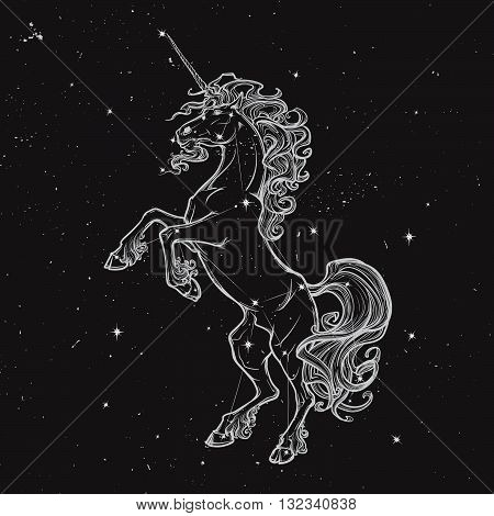 Unicorn standing on its hind legs as a traditional heraldry emblem. Sketch on a nightsky background with stars. EPS10 vector illustration.