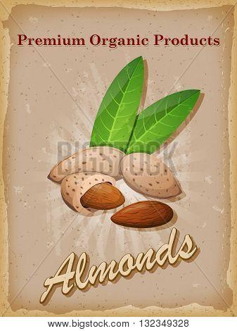 Almonds vintage poster. Vector illustration. EPS 10