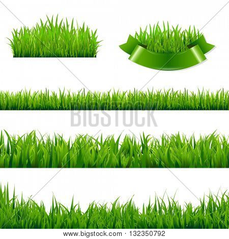 Green Grass Borders Collection, , Isolated  Background, Vector Illustration