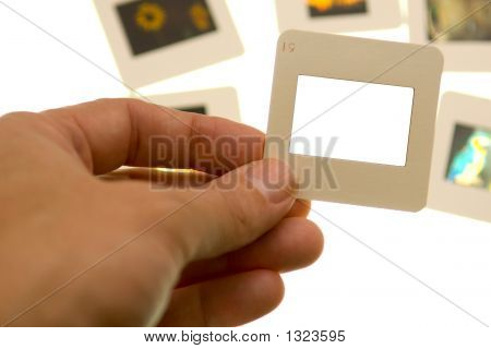 Inspecting Slides - Blank Slide - Insert Your Own Picture