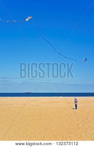Child and Paper Kite above Atlantic Ocean shore at Sandy Hook with a view of NYC. Sandy Hook is in New Jersey USA.