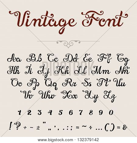 Elegant Calligraphic Script Font vector typeface letters numbers