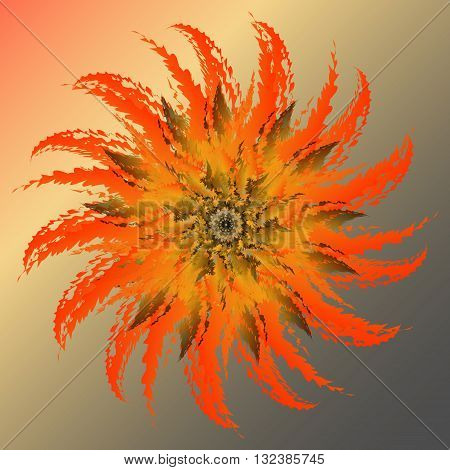 Blooming cactus. Bright orange flower blossoming poppy lilting background.