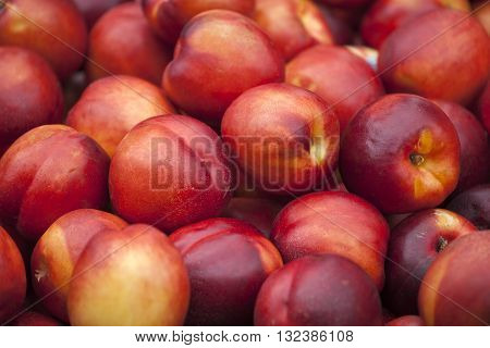 A group of colorful nectarine fruits on a market