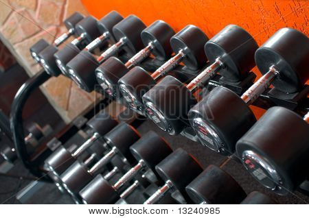 Dumbells On Weights Holder