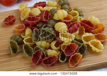 Various Color Macaroni - Shells