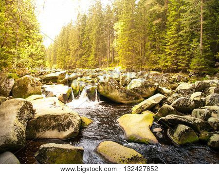 Mossy rocks in the wild stream of Vydra river, Sumava National Park, Bohemian Forest, Czech Republic
