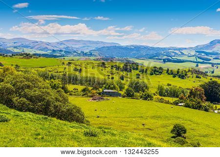Hill view farm rural area Otago region New Zealand