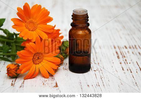 Calendula Flowers And Massage Oil