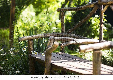 Summer garden. Wooden bench in summer garden surrounded by daisies