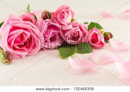 Pink Roses On White Silk Textile