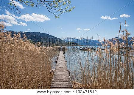 Wooden Boardwalk In The Reed, View To Lake Tegernsee And The Alps