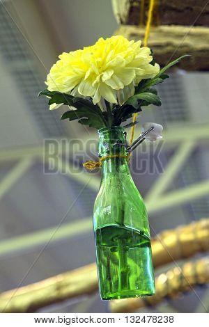 cute yellow Chrysanthemum flower in diy hanging green glass bottle for vase, selective focus