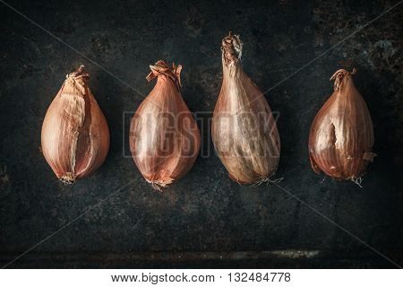 Shallots on the old metal background horizontal