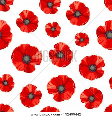 Vector seamless pattern with red poppies on a white background.