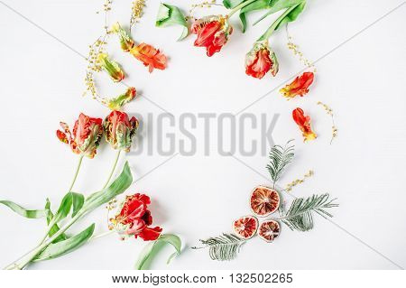 wreath frame with red and white roses ranunculus and tulips and oranges isolated on white background. flat lay overhead view