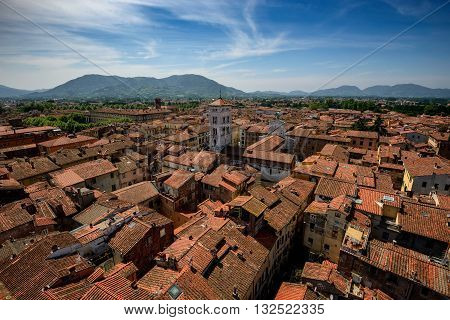 View Of Lucca And San Michele Church , Lucca, Italy