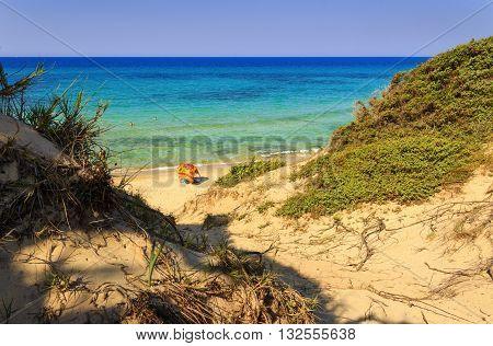 Marine Protected Area of Torre Guaceto. BRINDISI (Apulia)-ITALY-