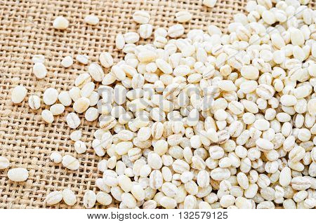 The pearl barley seeds on sack background.